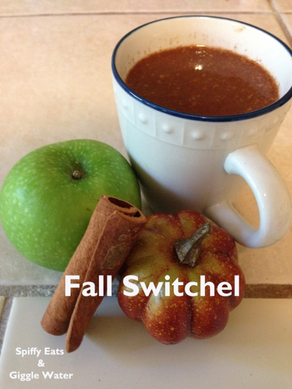 fall cider switchel. switchel is a healthy drink.